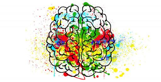 Journée d'étude du CEAP UQAM, 2e édition: «Les neurosciences en éducation: un réel apport pour la recherche et la pratique?»