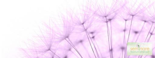 Fondements et pratiques de recherche: l'expérience du Groupe d'étude, de recherche et de diffusion en éducation scientifique et biologique et en éducation relative à l´environnement, Université d'État de Maringá, Brésil