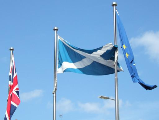 Entre l'arbre et l'Écosse : économie, fiscalité et question nationale écossaise à l'aube du Brexit