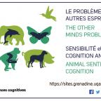 École d'été ISC 2018 en cognition animale