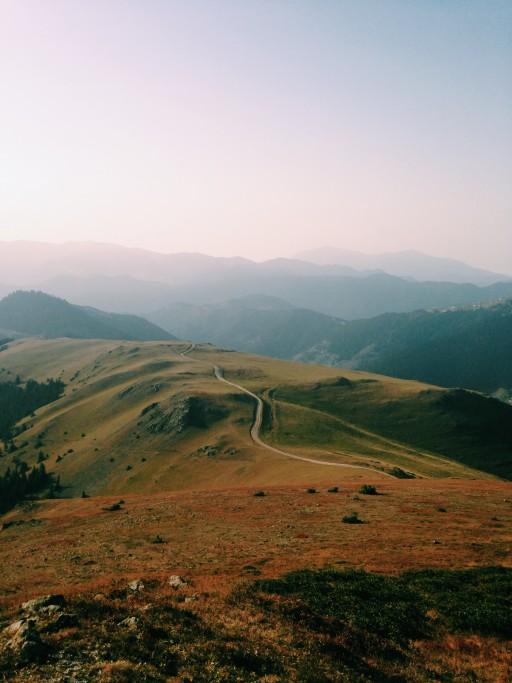 Réduction du stress basée sur la présence attentive (Mindfulness)