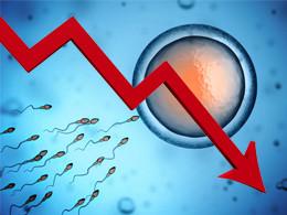 Fertilité en danger
