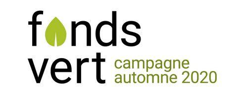 Rencontre d'idéation et d'information pour l'appel de projets du Fonds vert